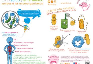 MICROBIOMA SALUD ENFERMEDAD