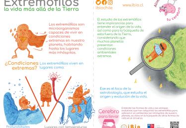 8. Extremofilos WEB